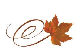 Spring Flowers, Autumn Leaves, Grapes Swirly Orance Sugar Maple Leaf Artwork
