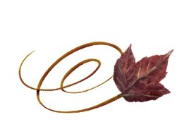 Spring Flowers, Autumn Leaves, Grapes Swirly Poplar Leaf Artwork