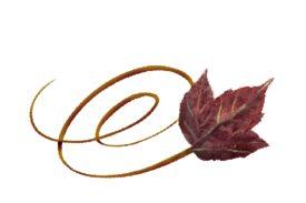 Spring Flowers, Autumn Leaves, Grapes Swirly Poplar Leaf Artwork
