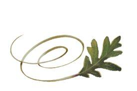 Spring Flowers, Autumn Leaves, Grapes Swirly Swamp Oak Leaf Artwork