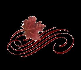 Leaf Flourish 10 Spring Flowers, Autumn Leaves, Grapes Wedding Illustration