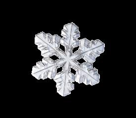 Snowflake 02 Winter and Holiday Wedding Illustration