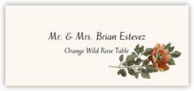 Orange Wild Rose