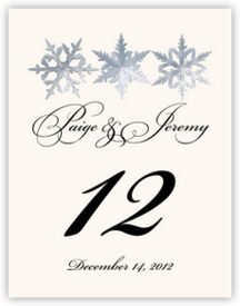 Snowflake Pattern 01 Winter, Snowflake, and Holiday Table Numbers