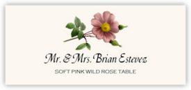 Soft Pink Wild Rose