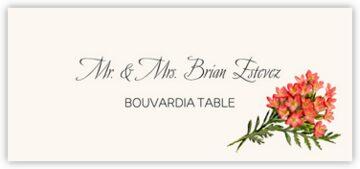 Bouvardia Place Cards