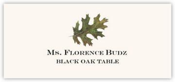 Black Oak Colorful Leaf