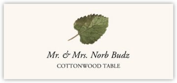 Cottonwood Colorful Leaf Place Cards