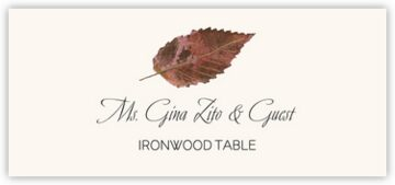 Ironwood Colorful Leaf Place Cards