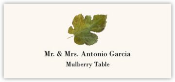 Mulberry Colorful Leaf Place Cards