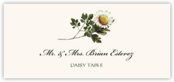 Daisy Place Cards