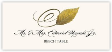 Beech Swirly Leaf Place Cards