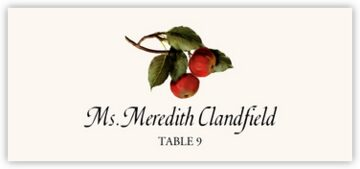 Two Apples Place Cards