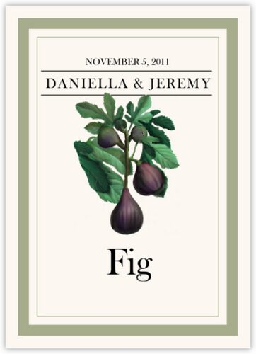 Fruit, Vegetables, Nuts & Grains Table Names