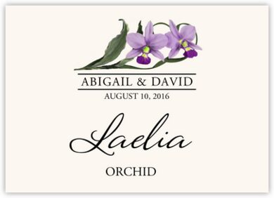 Orchid Assortment Table Names