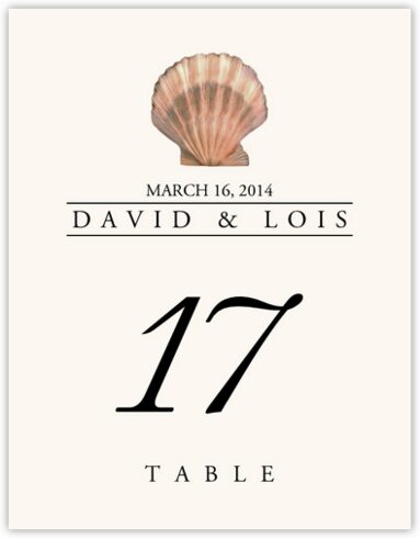 Seashell Assortment Table Numbers