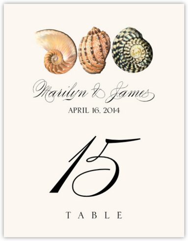 Seashell Pattern 01 Table Numbers