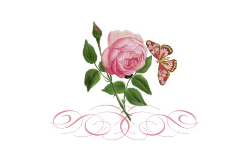 Monogram: Pink Tea Rose Botanical Monogram