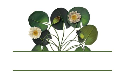Monogram: Waterlily Patch Botanical Monogram