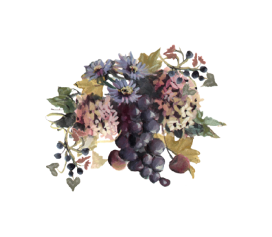 Blue Grapes and Chicory 01 Spring Flowers, Autumn Leaves, Grapes Wedding Illustration