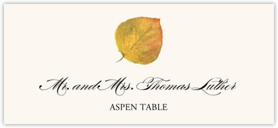 Assorted Colorful Leaves Autumn/Fall Leaves Place Cards