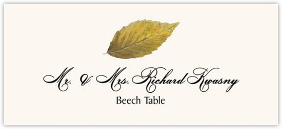 Beech Colorful Leaf Autumn/Fall Leaves Place Cards