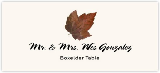 Boxelder Colorful Leaf Autumn/Fall Leaves Place Cards