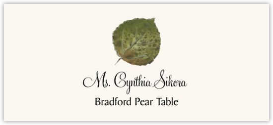Bradford Pear Colorful Leaf Autumn/Fall Leaves Place Cards