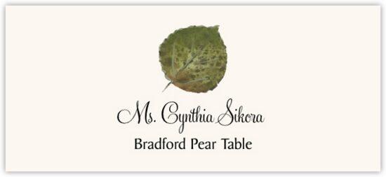 Bradford Pear Colorful Leaf Autumn/Fall Leaves Place Cards