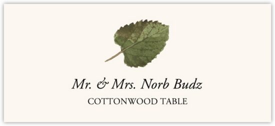 Cottonwood Colorful Leaf Autumn/Fall Leaves Place Cards