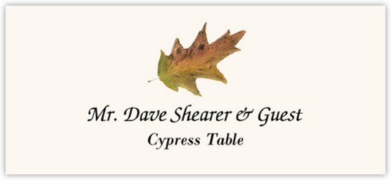 Cypress Colorful Leaf Autumn/Fall Leaves Place Cards
