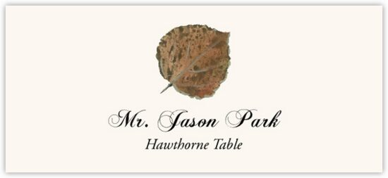 Hawthorne Colorful Leaf Autumn/Fall Leaves Place Cards