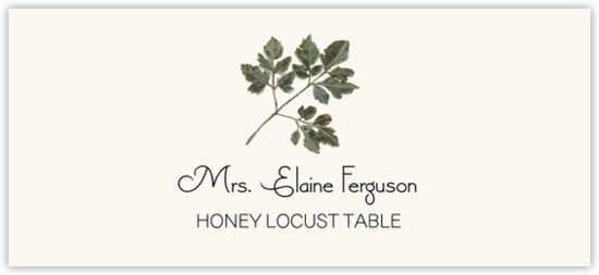 Honey Locust Colorful Leaf Autumn/Fall Leaves Place Cards