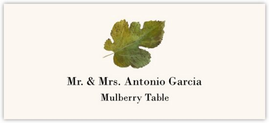 Mulberry Colorful Leaf Autumn/Fall Leaves Place Cards