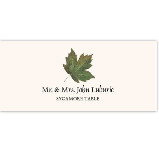 Sycamore Colorful Leaf Autumn/Fall Leaves Place Cards