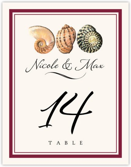 Conch Pattern Beach and Seashell Table Numbers
