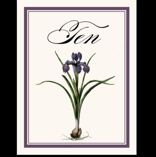 Iris Bulb