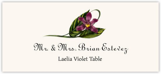 Laelia Violet