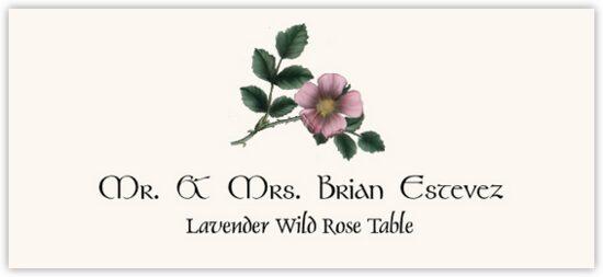 Lavender Wild Rose