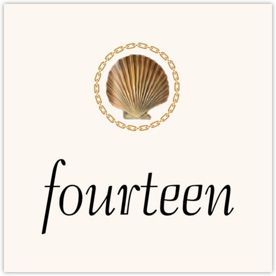 Nautilus Seashell Flourish Beach and Seashell Table Numbers