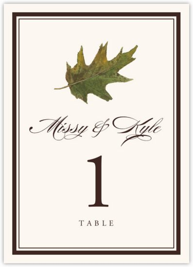 Colorful Leaves Assortment 01 Autumn and Fall Leaves Table Numbers