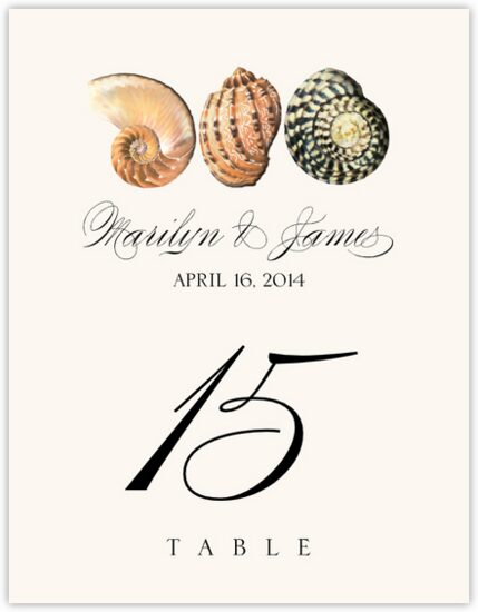 Seashell Pattern 01 Beach and Seashell Table Numbers
