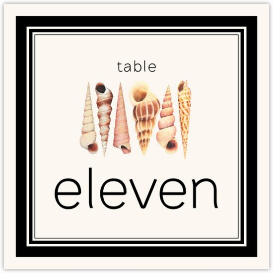 Seashell Pattern 09 Beach and Seashell Table Numbers