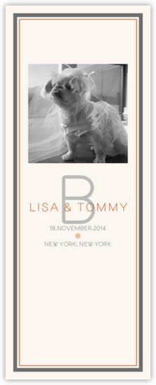Simple Affair Photography Photo Wedding Programs