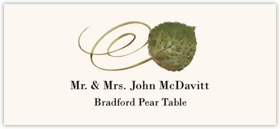 Bradford Pear Swirly Leaf Autumn/Fall Leaves Place Cards