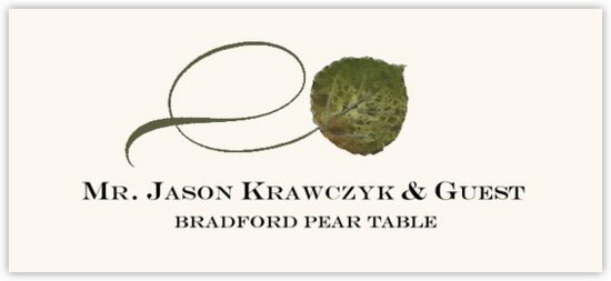 Bradford Pear Twisty Leaf Autumn/Fall Leaves Place Cards