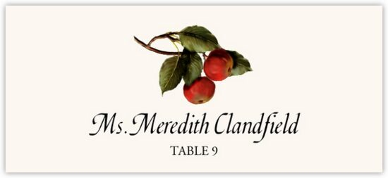 Two Apples Fruit, Grapes and Vineyard Place Cards