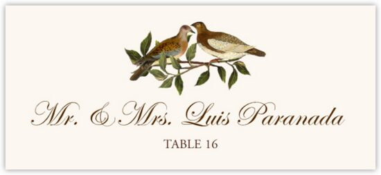 Brown Birds Birds and Butterflies Place Cards
