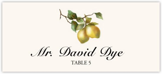 Two Lemons Fruit, Grapes and Vineyard Place Cards