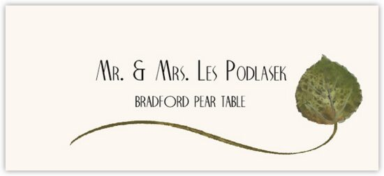 Bradford Pear Wispy Leaf Autumn/Fall Leaves Place Cards
